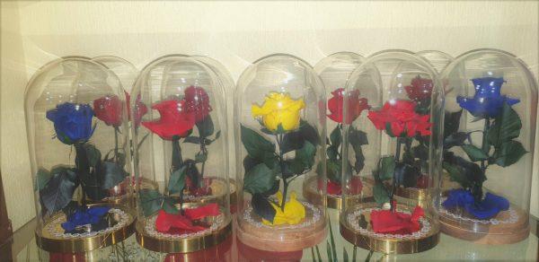 Urna de rosas preservadas - Floristería Macherí Jerez